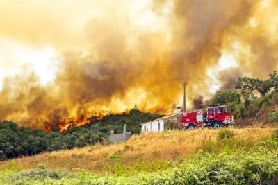 california wildfire arson