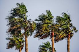 Strong Winds Sweep SoCal