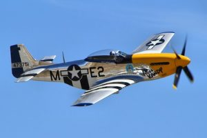 P-51 Mustang: Americas Fighter